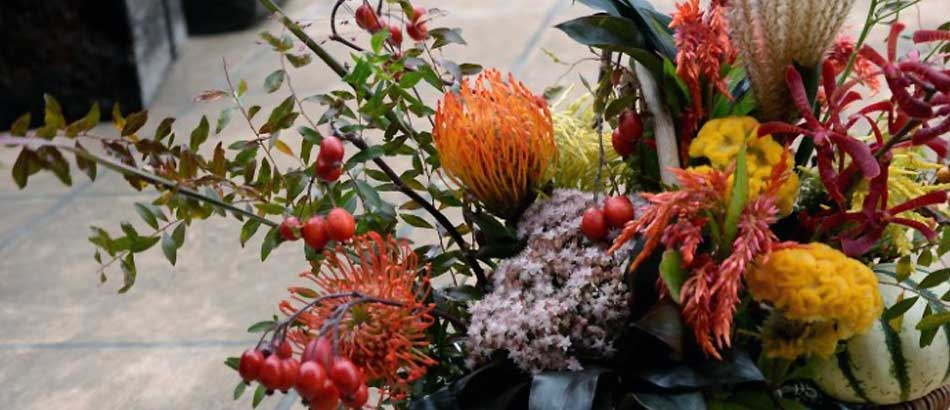 鈴バラの実 秋色の花たち