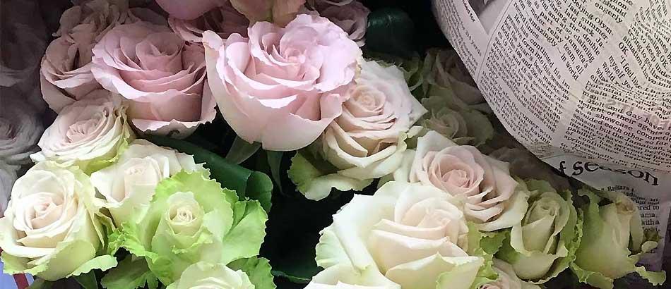 大人色でカッコいいバラ テナシス