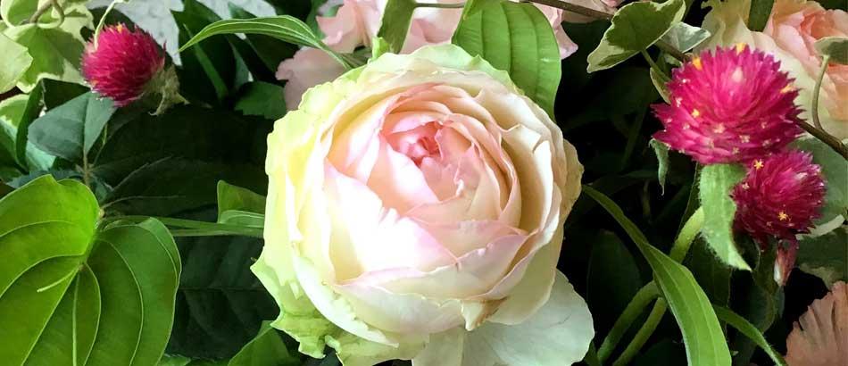 ふんわりと優しい花を…お誕生日のプレゼント