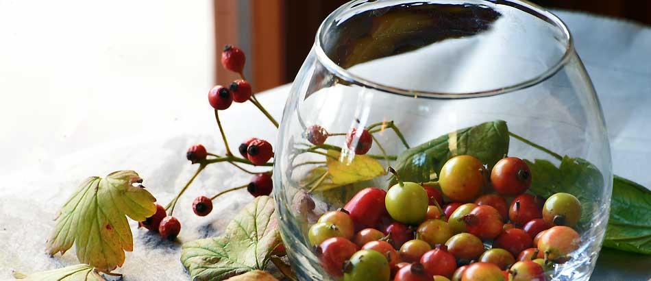 落下した実をグラスに入れただけで秋を体感