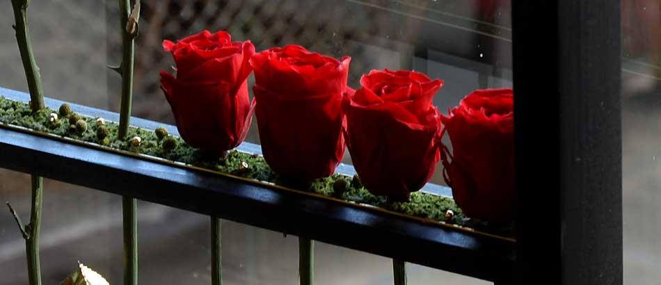 黒いフレームに赤いバラ 金色の葉がキラリ