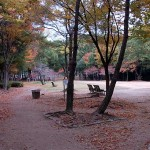 晩秋の猪名川公園を歩きました。