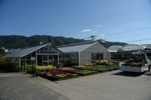 斉藤農場 2